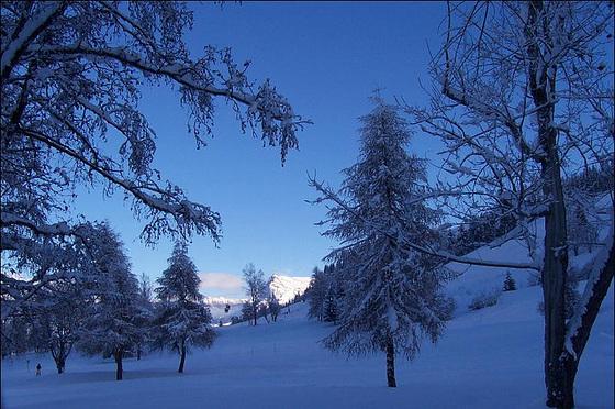 dans le froid du petit matin