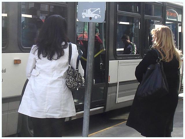 Shuffle Goddesses- Déesses de navette- PET Montreal airport-