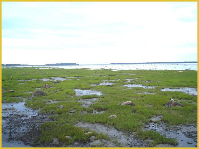 St-Lawrence river low tide eyesight - Fleuve à marée basse -  Rimouski- Québec- CANADA. 11 août 2007