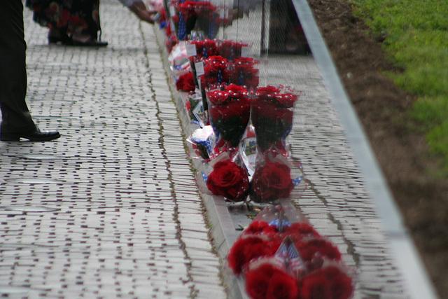 92.VietnamVeteransMemorial.WDC.23may08