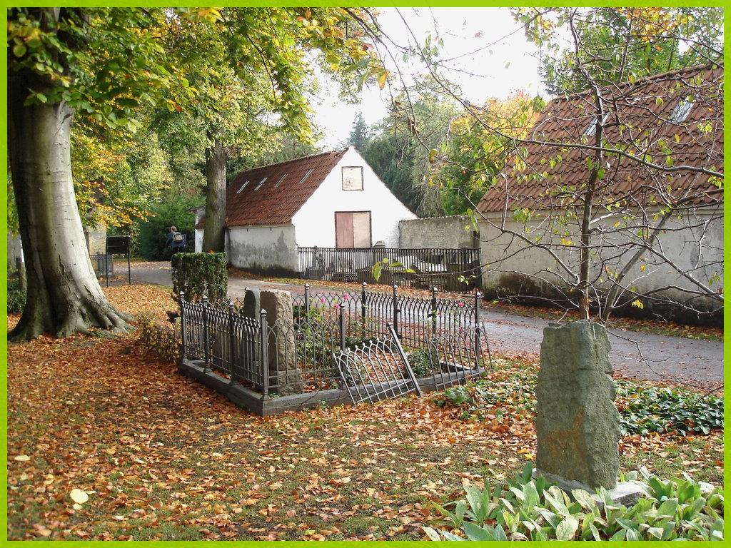Cimetière de Copenhague- Copenhagen cemetery- 20 octobre 2008- Lugubre beauté automnale - Lugubrious autumnal scenery.