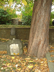Helsingborg cemetery - Cimetière de Helsingborg-  Suède / Sweden - Jenny.  22 octobre 2008