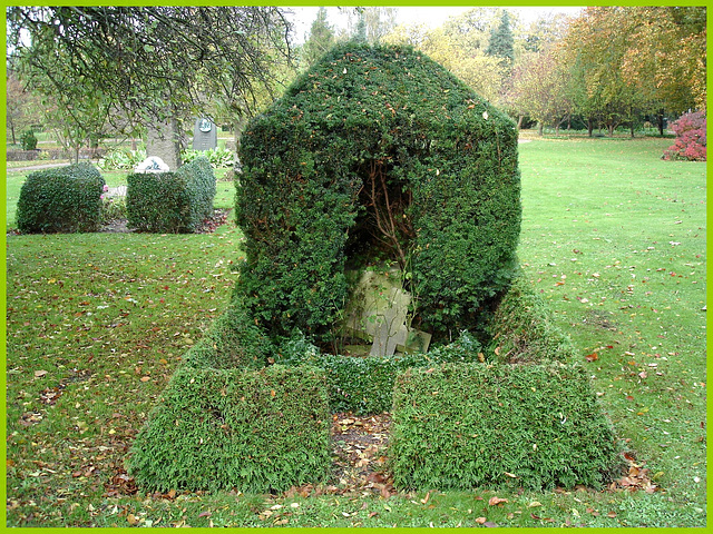 Cimetière de Copenhague- Copenhagen cemetery- 20 octobre 2008-Haie mortuaire- Funeral hedge.