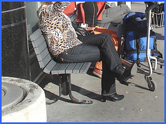 Blonde léopardienne en bottes à talons hauts et verres fumés-  Leopard blond mature with sunglasses and high-heeled Boots- Aéroport de Montréal PET- Montreal PET airport