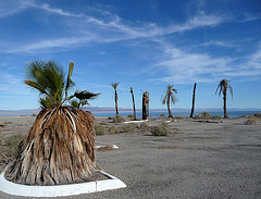 Salton Bay Yacht Club Site (2417)