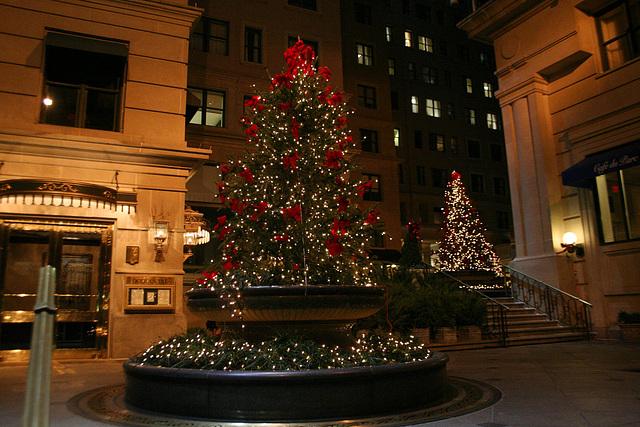 HolidayTrees.WilliardHotel.WDC.20dec07