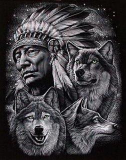 tre lupi con indiano2[1]
