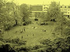 Helsingborg cemetery - Cimetière de Helsingborg-  Suède / Sweden - From the top of the hill - Du haut de la colline - À l'ancienne
