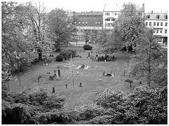 Helsingborg cemetery - Cimetière de Helsingborg-  Suède / Sweden - From the top of the hill - Du haut de la colline / 22 octobre 2008 - Noir et blanc.