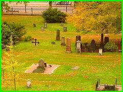 Helsingborg cemetery - Cimetière de Helsingborg-  Suède / Sweden - From the top of the hill - Du haut de la colline - Recadrage- Close-up / 22 octobre 2008