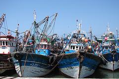 Maroc 2008 273