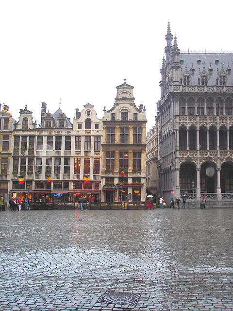 Brussels / Bruxelles - Grande Place / 9 novembre 2007.