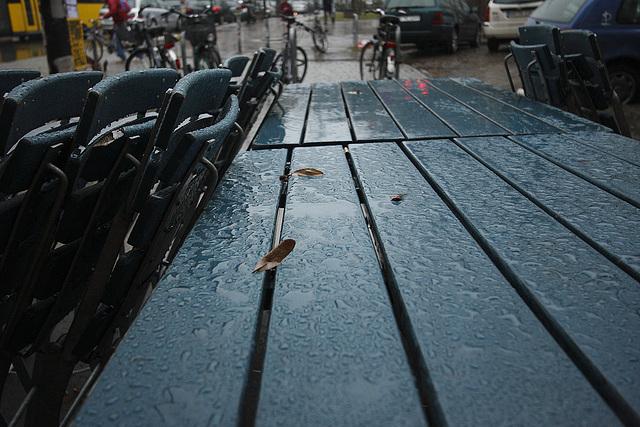 regentropfen / raindrops