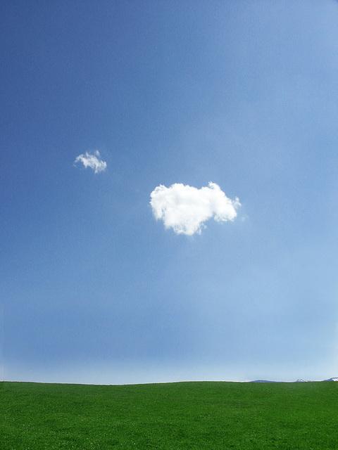 follow the cloud...