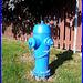 Borne à incendie - Firemen spring  /    Vive le BLEU !!!!!!   I love the BLUE color !!!!  Dans ma ville - Hometown.