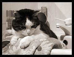 Wann darf ich endlich baden?