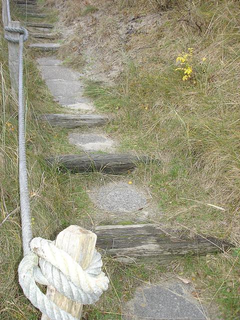 Treppe in den Dühnen