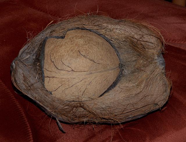 DAS ist DAS - Coconut half