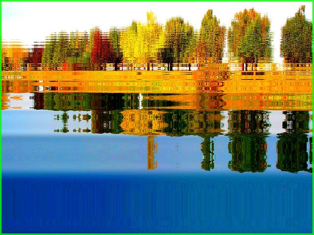 Reflet arborescent mouillé et multicolore. Photofiltre reflet dans l'eau. Dans ma ville / Hometown.