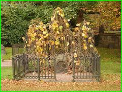 Cimetière de Helsingborg - Helsingborg cemetery- Sweden / Suède- Bengt & Anna  dans le branchage- Anna and Bengt in the branches . 22 octobre 2008