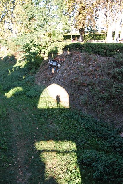Reflet a Carcassonne