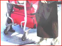 Dame blonde d'âge mûr en Bottes sexy et son chauffeur- Blond mature in sexy boots with her private driver-Montreal PET airport- Aéroport PET de Montréal. Photofiltre créations.