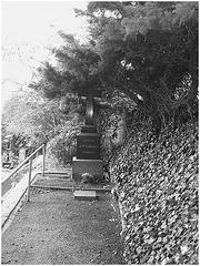 Cimetière de Helsingborg cemetery - Suède /  Sweden - A.P. Friberg family -  22 octobre 2008 / Black & white.