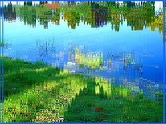 Reflet arborescent mouillé et multicolore /  Wet trees reflection and multicolored - Ondulations verticales / Vertical corrugations -   Dans ma ville / Hometown.