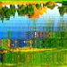 Reflet arborescent mouillé et multicolore / Reflets dans l'eau