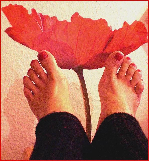 Pieds voluptueux et rouge floral lascif.  Voluptuous feet and lascivious floral.  Cadeau  /  Gift .