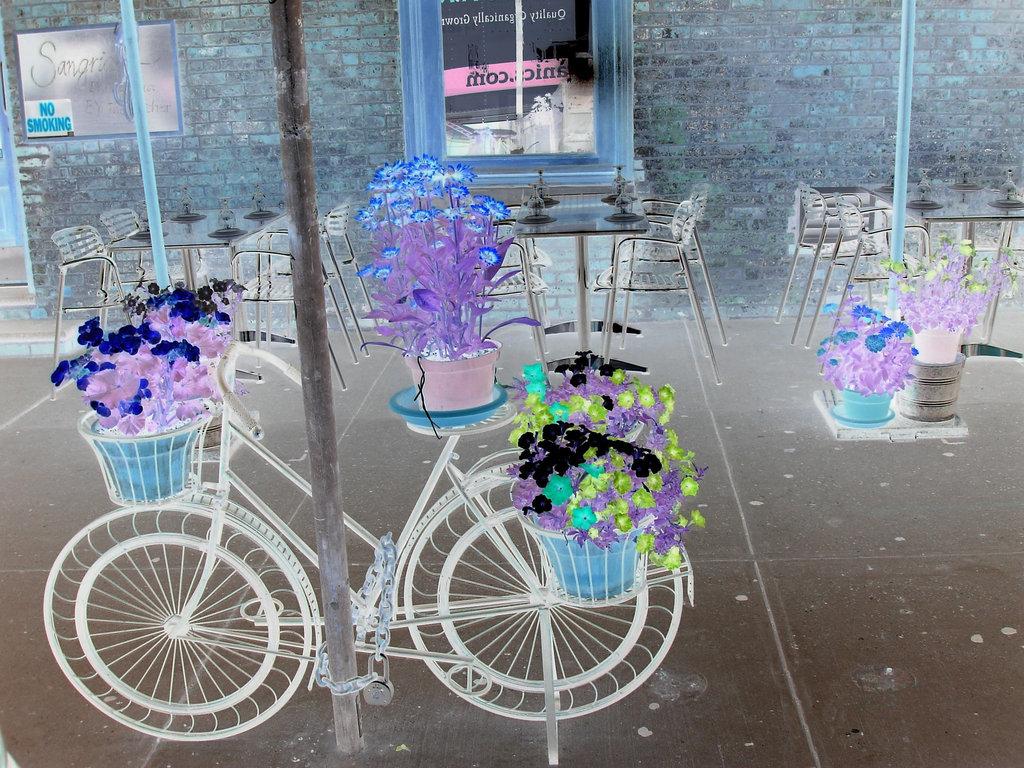 New- york city - Vélo fleuri - Colourful flowery bike -  Photofiltre- Effet de négatif.
