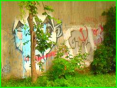 Graffitis et dessins artistiques.   Dans ma ville.  Été 2008