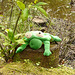 9 Bedgebury Pinetum Silly Frog