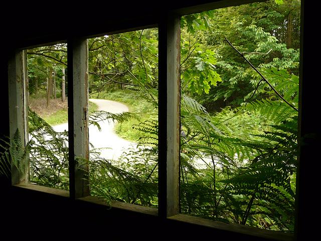 3 Bedgebury Pinetum Saw Mill Window