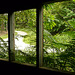 3 Bedgebury Pinetum Saw Mill Window
