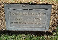 Robert Young (1999)