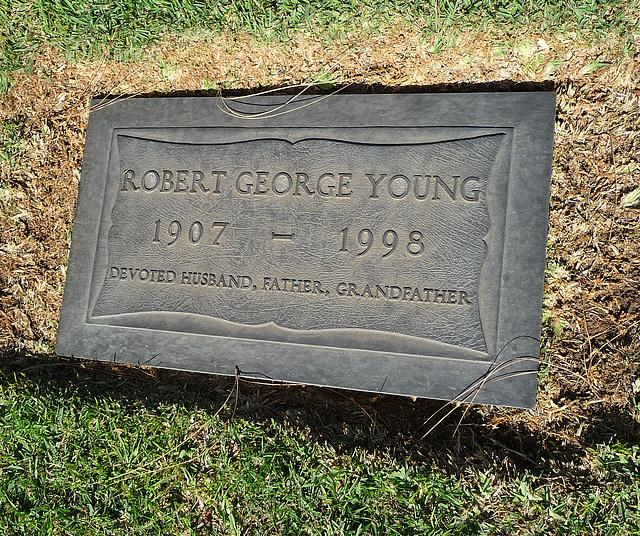 Robert Young (2001)