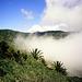 Nebel vor Las Hayas