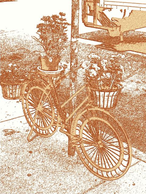 Vélo en fleurs- Flowery bike- Effet sanguine Photofiltre. NYC. USA.