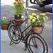 Vélo en fleurs- Flowery bike- NYC.
