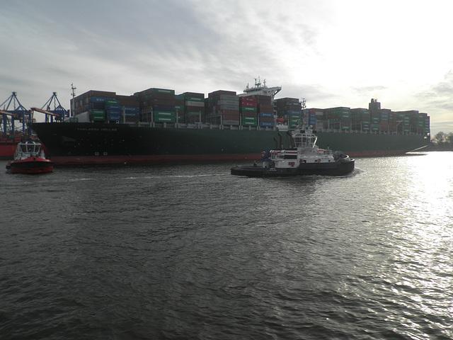 Containerschiff  THALASSA HELLAS