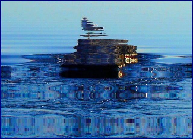 Mouette sur roche / Seagull on the rock - Photofiltrée avec effet reflet dans l'eau.  Dans ma ville - Hometown.