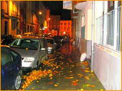 Bruxelles- À la sortie du show de Jazz- Coming out from the Jazz show - Cap Sud -  8 novembre 2007.