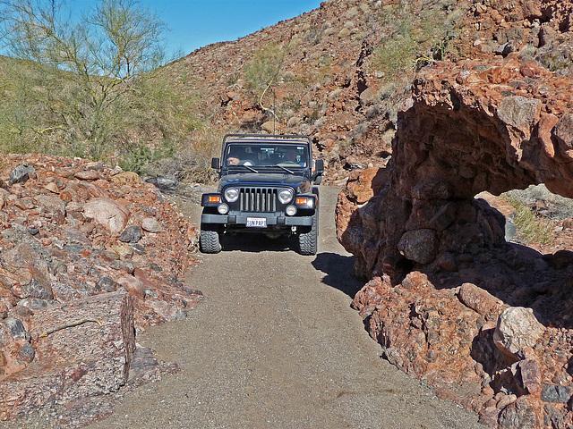 Arch in Chuckawalla Canyon (2239)