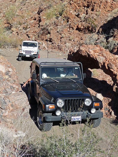 Arch in Chuckawalla Canyon (2241)