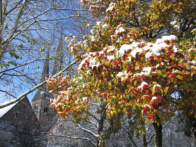 bethlehemkirche -november