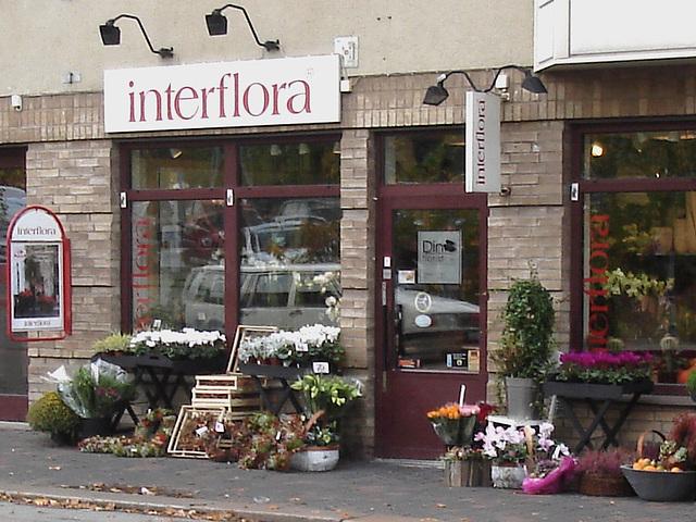 Boutique de fleurs Interflora / Interflora store  -  Helsingborg / Suède - Sweden.  22 octobre 2008
