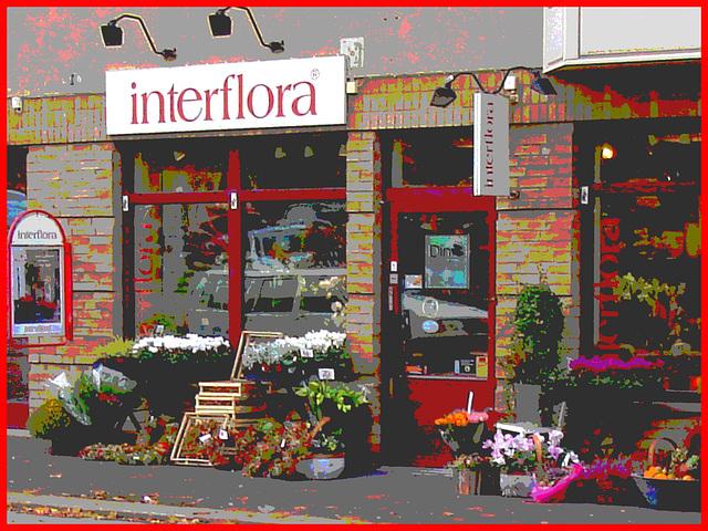 Boutique de fleurs Interflora / Interflora store  -  Helsingborg / Suède - Sweden.  22 octobre 2008-  Postérisée avec cadre rouge