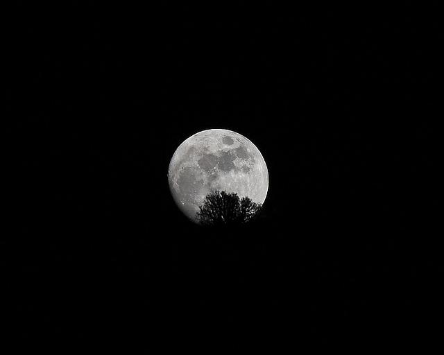 Mond über Teneriffa / moon over tenerife