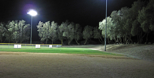 Wardman Park at Night (0039)